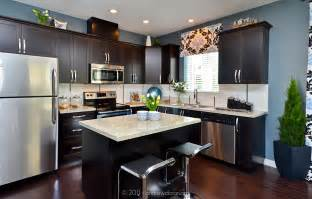 Kitchen Colors Dark Cabinets by White Granite Countertops With Dark Cabinets