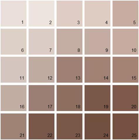 benjamin paint colors brown palette 02 house
