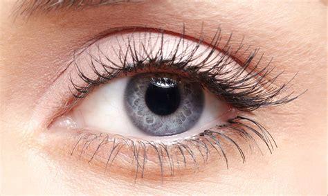 imagenes de ojos naturales ojos grises descubre el secreto que oculta esta bell 237 sima