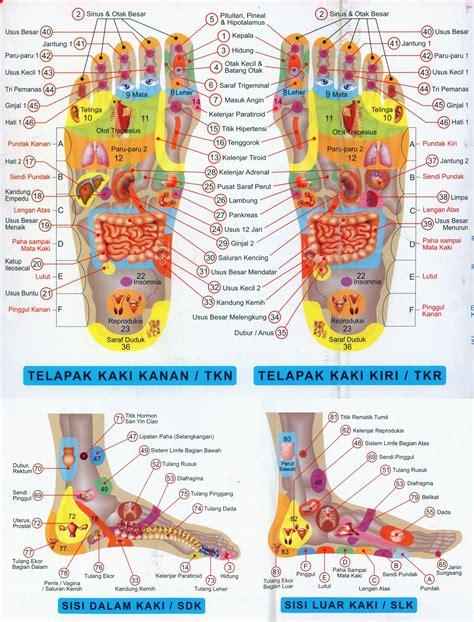 Alat Pijat Refleksi Telapak Kaki nikmati manfaat pijat refleksi kaki yang menyehatkan serba serbi hidup