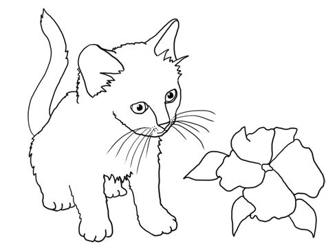 tabby cat pages coloring pages