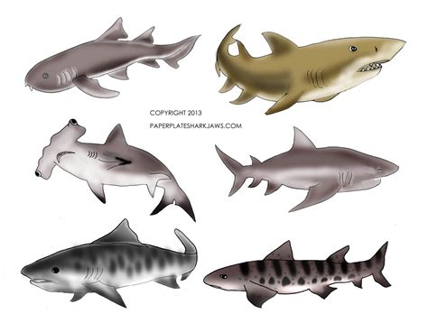 printable shark images tutorial sharknado paper plate mobile dollar store crafts