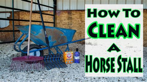 How To Clean Used by How To Clean A Stall