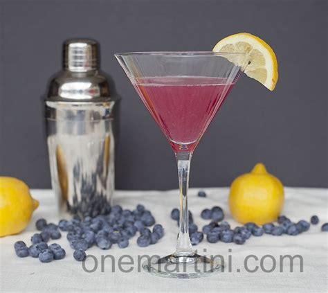 blueberry martini recipe 9 best 174 vodka blueberry images on pinterest