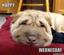 Meme Wednesday - wednesday meme happy wednesday picsmine