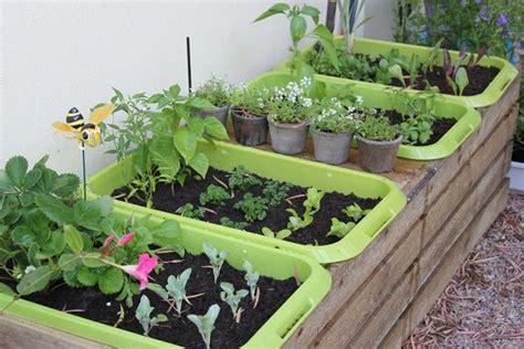 piante da orto in vaso orto in vaso orto in terrazzo orto in vaso instruzioni