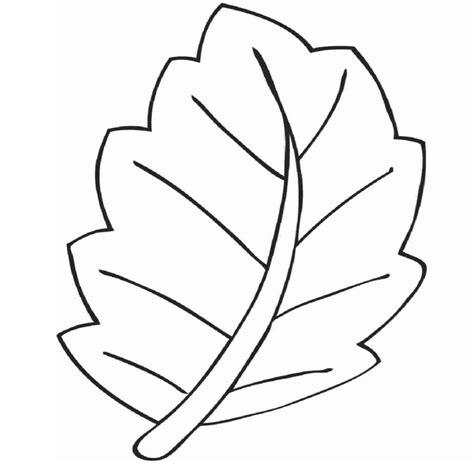 dibujos en hoja semilogaritmica rboles para colorear perfect dibujos de rboles en otoo