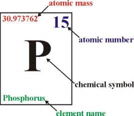 Number Of Protons Of Phosphorus The Atom