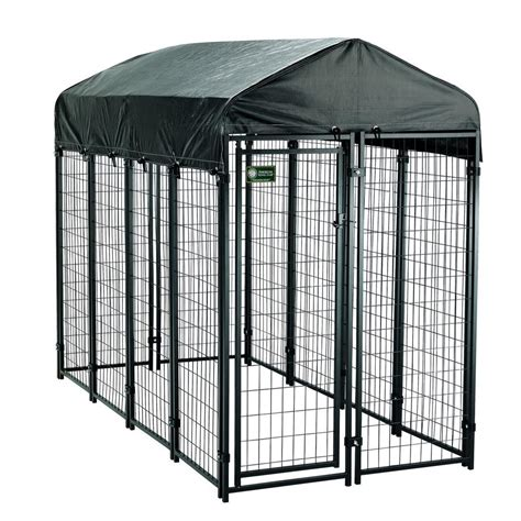 10x20 kennel american kennel club 4 ft x 8 ft x 6 ft uptown premium steel boxed kennel kit