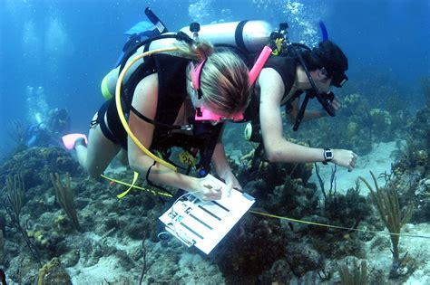 schools offering the best marine biology graduate programs