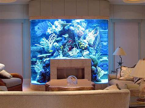 Fish Tank Headboards For Sale by Fish Tank Headboard For Sale Bedroom Ideas Pictures