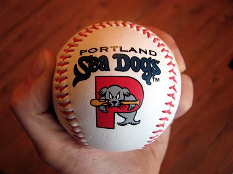portland puppies portland sea dogs the ballpark guide
