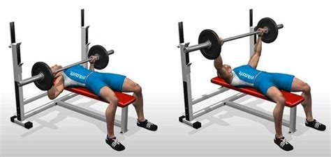 build workout bench check out the best muscle building workout plan for the
