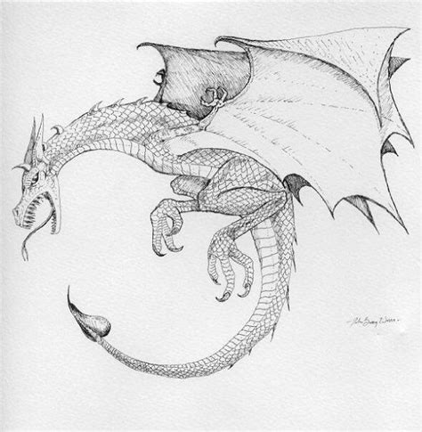 dragon s gate tattoo 1000 images about wyvern on clipart images