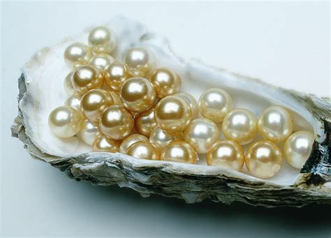 Fish Home Decor Accents by Types Of Pearls Used In Antique And Vintage Jewelry