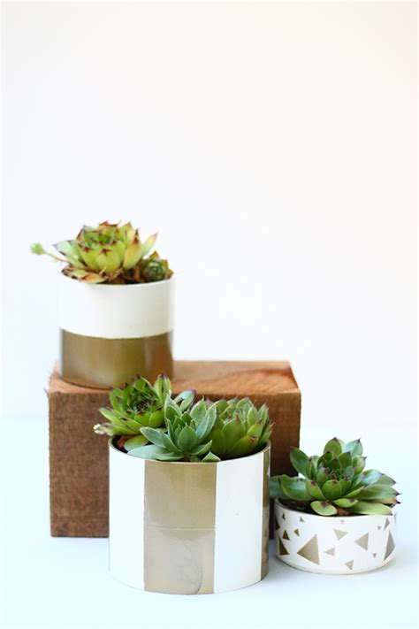Diy Pvc Planter by Diy Pvc Pipe Planter Squirrelly Minds