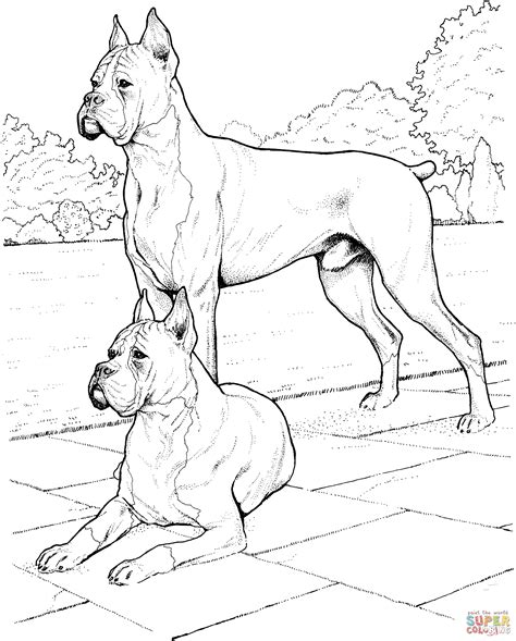 coloring pages of two dogs dibujo de dos perros b 243 xer para colorear dibujos para