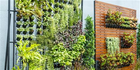 Green Wall Garden Green Walls And Vertical Gardens Lifestyle Home