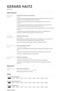 market development manager resume sles visualcv
