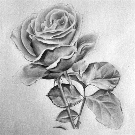 Simply Idea Lukisan U Bingkai 16 contoh gambar sketsa bunga yang mudah digambar haran