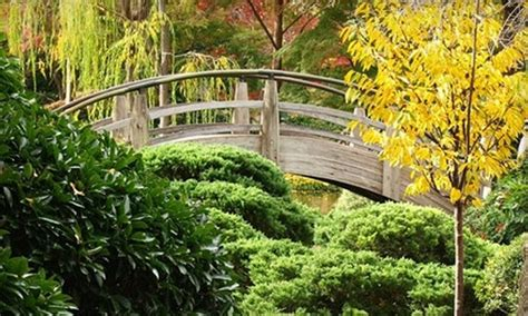 Botanic Garden Fort Worth Up To 44 Admission To Japanese Garden Fort Worth Botanical Society Groupon