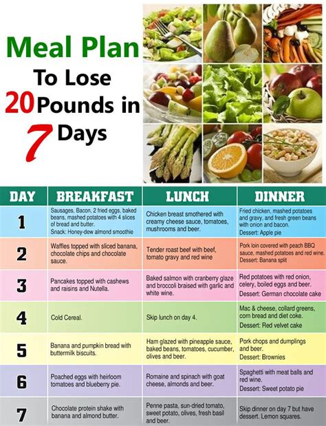 best diet to lose weight in a week i need a diet plan to lose 20 pounds diet