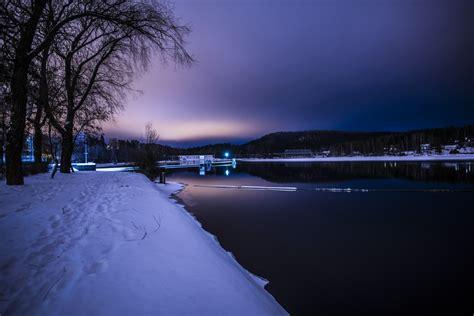 images landscape tree nature horizon snow