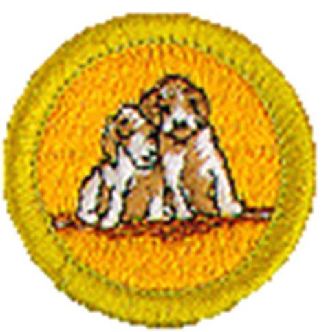 care merit badge care merit badge