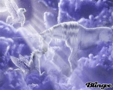 imagenes de unicornios y pegasos entre unicornios y pegasos picture 88669003 blingee com