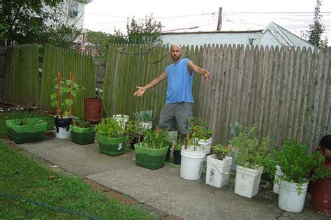 vegetable garden containers cheap gardens in nyc and los angeles organic gardener