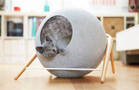 cucce per gatti da interno cucce per gatti di design e trasportini 3 soluzioni