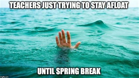 Teacher Spring Break Meme - 589 best a teacher s face when images on pinterest
