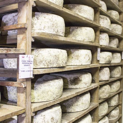 Shelf Cheese by Formaggio Why Italian S Cheese Menabrea