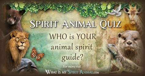 test animale guida spirit animal quiz what is my spirit animal