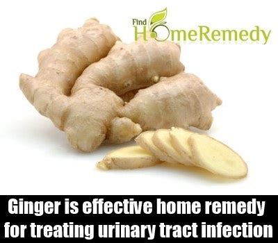 ginger is a disease effective natural cures for heart disease mzizi mkavu