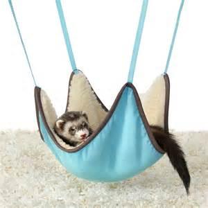 Ferret Hammock ferret hammock usa
