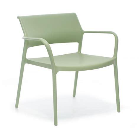 chaise pedrali chaise ara pedrali