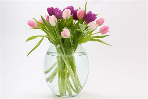 vasi x fiori vasi in vetro per fiori e piante 5 idee di design