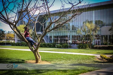 Mba Csudh by Cal State Dominguez Mba Program Free