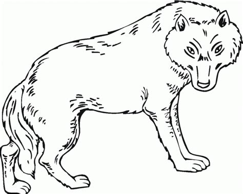 free coloring pages of puppy wolves