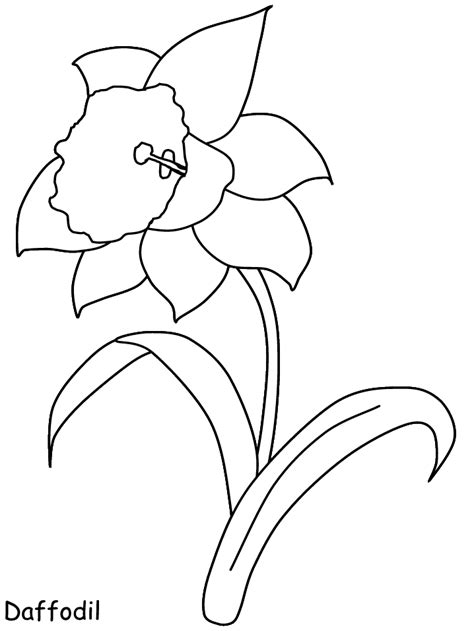 flower colouring template printable flowers az coloring pages