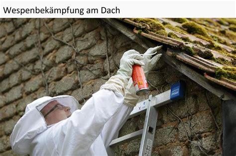 Bienen Rolladenkasten Vertreiben by Wespenvernichtung Wespen Bek 228 Mpfen Und Vertreiben