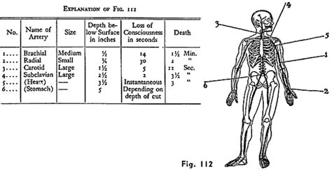 Basic Manual Of Knife Fighting school stabbing gives perspective on mass violence knives
