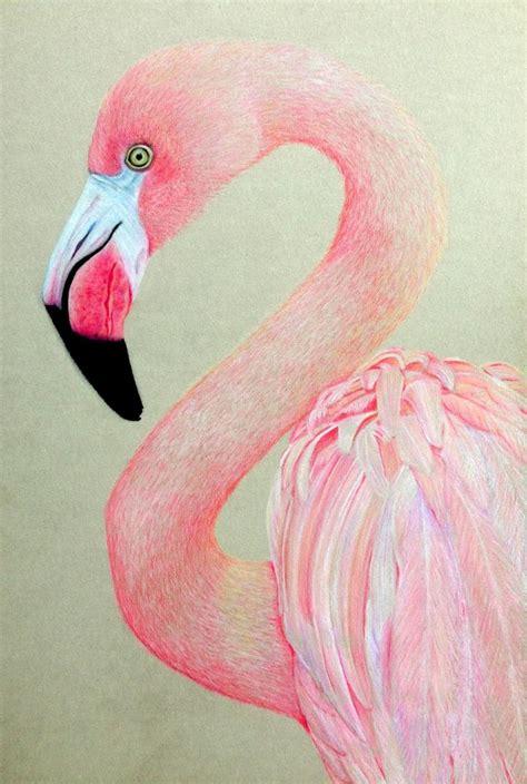 Ballerina Wall Mural 25 best ideas about flamingo illustration on pinterest