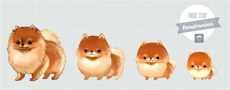 pomeranian chibi the gallery for gt chibi lineart
