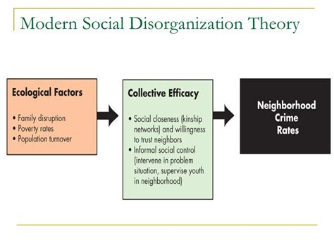Why Am I So Modern Theories by Shaw And Mckay Juvenile Delinquency In Areas Ppt