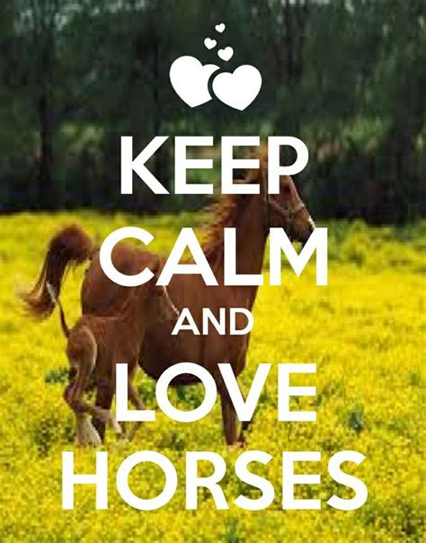 imagenes de keep calm and love horses 39 best keep calm and love horses images on pinterest