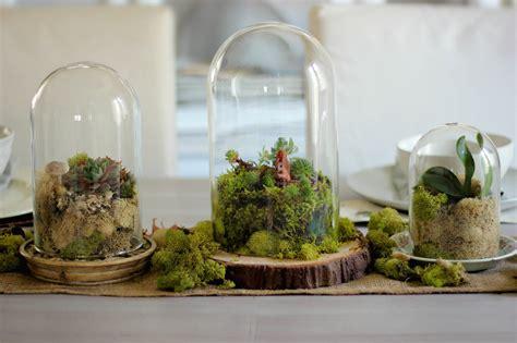 build  terrarium  pictures ehow