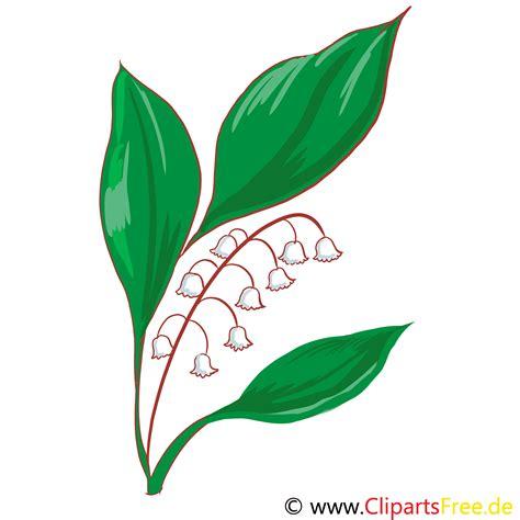 Muguet Fleurs Images by Muguet Illustration Gratuite Fleurs Clipart Fleurs