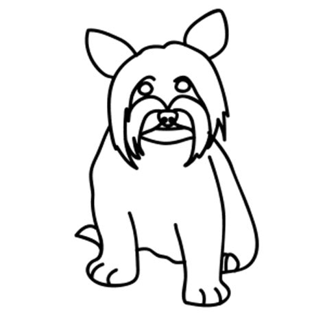 how to draw a yorkie step by step how to draw a yorkie